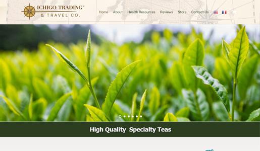 Ichigo Trading Company